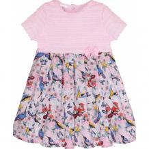 Купить мамуляндия платье для девочки райские птички 19-416 19-416 райские птички