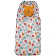 Купить polini конверт утепленный disney baby медвежонок винни чудесный день 0001966-21