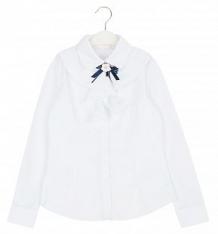 Купить блузка colabear, цвет: белый ( id 9398695 )