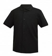 Купить рубашка белый слон, цвет: черный ( id 12774226 )