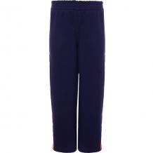 Купить спортивные брюки trybeyond 10964479