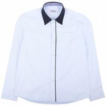 Купить рубашка rodeng, цвет: голубой ( id 799900 )