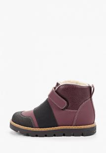 Купить ботинки tapiboo ta036agghnf0r310