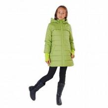 Купить пальто милашка сьюзи, цвет: салатовый ( id 11447176 )