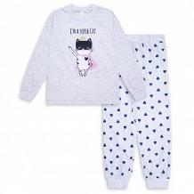 Купить пижама джемпер/брюки takro, цвет: серый ( id 12238978 )