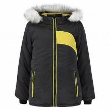 Купить куртка ursindo, цвет: черный/желтый ( id 11238578 )
