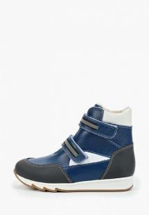 Купить ботинки tapiboo ta036akghne3r330
