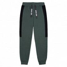 Купить спортивные брюки cubby exotic tropics, цвет: зеленый ( id 12758584 )