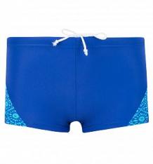 Купить плавки emdi, цвет: синий ( id 5604685 )