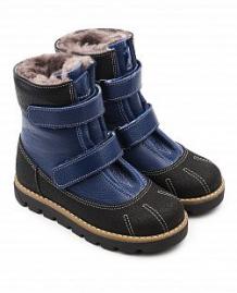 Купить ботинки tapiboo, цвет: синий ( id 11815924 )