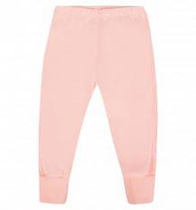 Купить брюки бамбук, цвет: розовый ( id 5174983 )