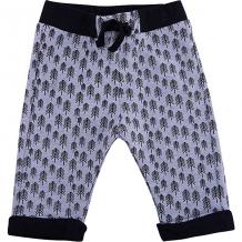 Купить спортивные брюки wojcik ( id 7266605 )