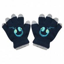 Купить перчатки yo!, цвет: синий ( id 12044206 )