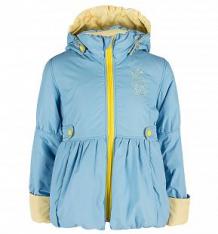 Куртка Даримир, цвет: голубой ( ID 2777384 )