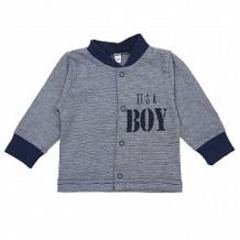 Купить кофта мелонс it's boy, цвет: голубой ( id 10885913 )