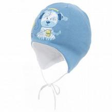 Купить шапка aliap, цвет: синий ( id 12655120 )