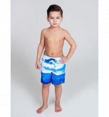 Купить шорты купальные sweet berry парусный спорт, цвет: синий ( id 10275794 )