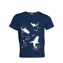 Купить футболка mbimbo, цвет: синий ( id 12591922 )