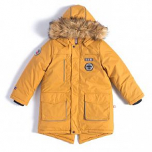 Купить куртка лайки вектор, цвет: желтый ( id 7463701 )