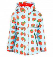 Купить куртка dudelf, цвет: голубой/красный ( id 9244219 )