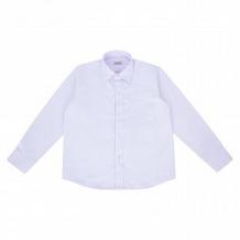 Купить рубашка rodeng, цвет: фиолетовый ( id 10696460 )