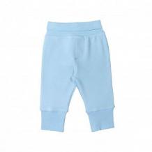 Купить брюки cherubino пес барбос, цвет: голубой ( id 11871484 )