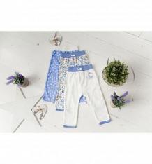 Купить комплект брюки 3 шт lucky child лаванда, цвет: синий/молочный ( id 8093011 )