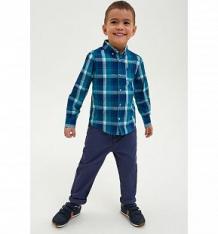 Купить брюки concept club recombent, цвет: голубой ( id 10344581 )