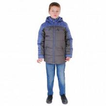Купить куртка милашка сьюзи, цвет: серый/синий ( id 11446516 )