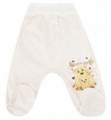 Купить ползунки три медведя мой малыш, цвет: бежевый ( id 9100147 )