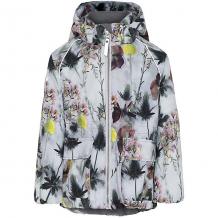 Купить утеплённая куртка molo ( id 12336754 )