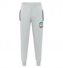 Купить брюки gt, цвет: серый ( id 6704899 )