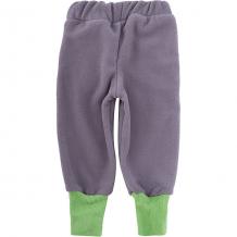 Купить спортивные брюки лисфлис чемпион ( id 7050562 )