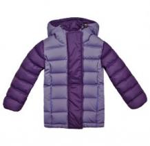 Купить куртка ёмаё бабочки, цвет: фиолетовый ( id 1082000 )