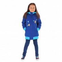 Купить куртка милашка сьюзи, цвет: синий ( id 11446618 )