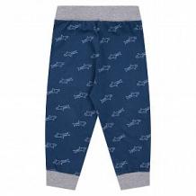 Купить брюки звездочка, цвет: синий ( id 12628696 )