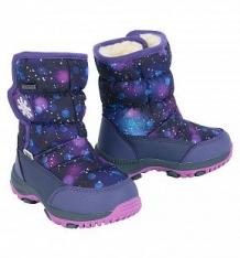 Купить сапоги twins, цвет: фиолетовый ( id 9713439 )
