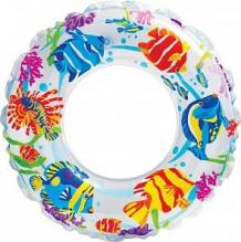 Купить надувной круг intex рифы океана, белый, 61 см ( id 5607745 )