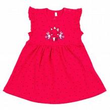 Купить платье мелонс cat, цвет: розовый ( id 11206892 )