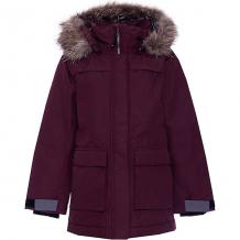 Купить утепленная куртка didriksons heijkenskjold ( id 9047938 )