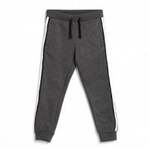 Купить брюки coccodrillo, цвет: серый ( id 12806926 )
