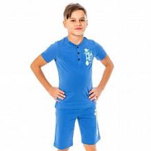 Купить футболка batik, цвет: синий ( id 12561598 )