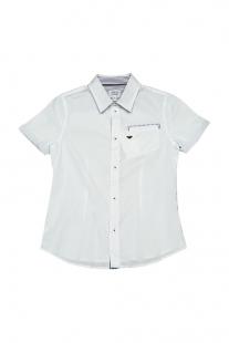 Купить рубашка armani junior ( размер: 152 12 ), 11449905