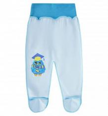Ползунки Babyglory Лесные жители, цвет: голубой ( ID 8418889 )
