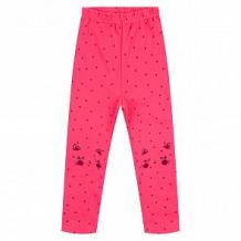 Купить брюки мелонс cat, цвет: розовый ( id 11206520 )