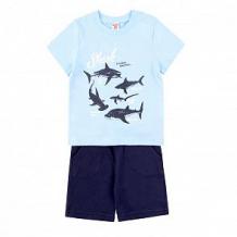 Купить комплект футболка/шорты optop, цвет: голубой/синий ( id 12756226 )