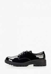 Купить ботинки geox ge347agkksa4e340