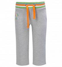 Купить брюки me&we, цвет: серый ( id 2920568 )