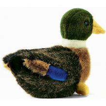 """Купить мягкая игрушка hansa """"птицы"""" утёнок, 19 см ( id 4927137 )"""