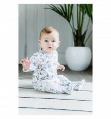 Ползунки Lucky Child Кролики, цвет: белый/голубой ( ID 7249405 )